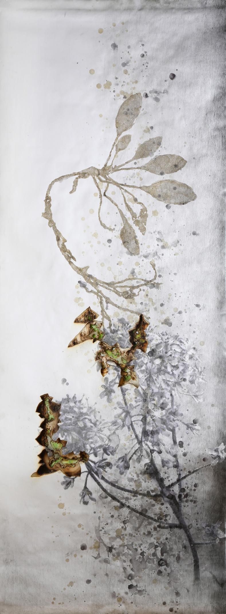 Akira Inumaru - Arc-en-ciel des plantes