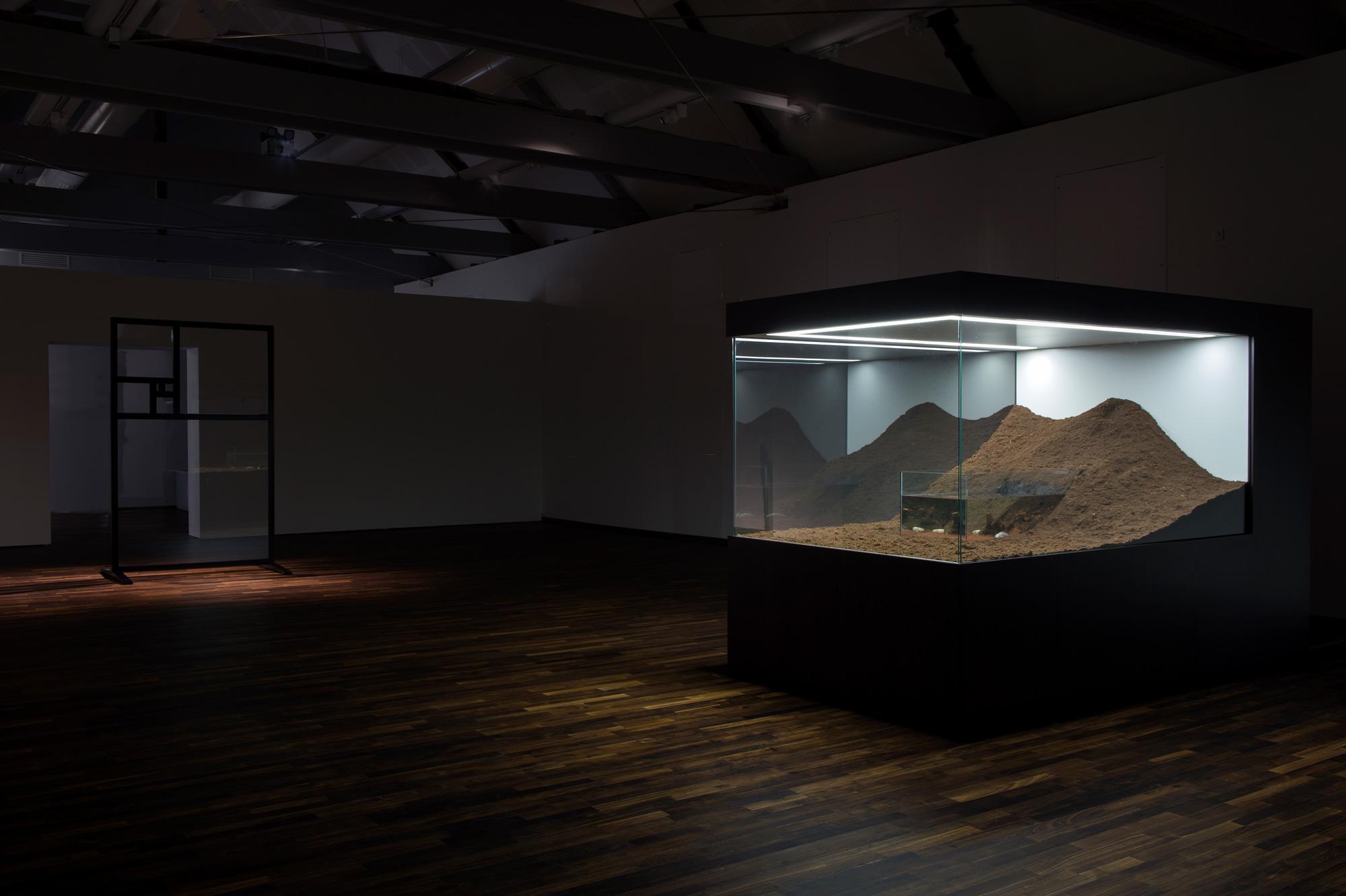 Mathieu Mercier au FRAC Normandie-Caen - Aquarium