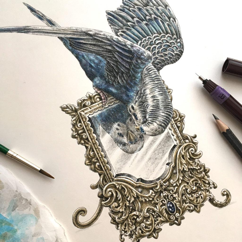 Détail de l'illustration Reflet de Perruche de Steeven Salvat